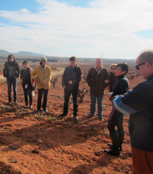 Explanations on wine making in the vineyards of Utiel